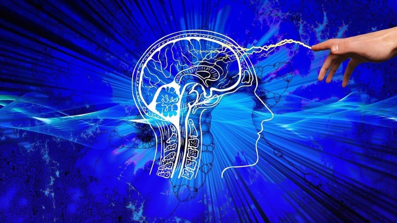 Boostez votre cerveau avec des compléments alimentaires