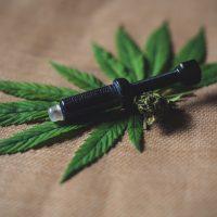 Qu'est ce que le système endocannabinoïde ?