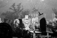 Plaque funéraire moderne: les différents styles
